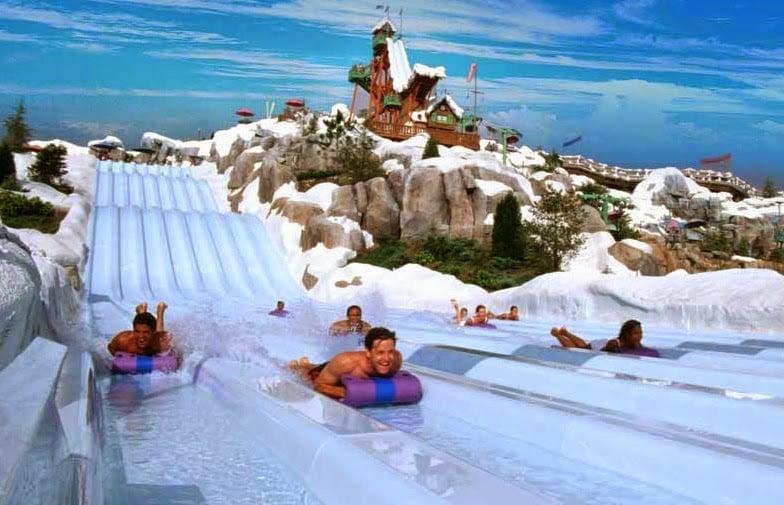 Parque Blizzard Beach da Disney Orlando: Toboggan Racers