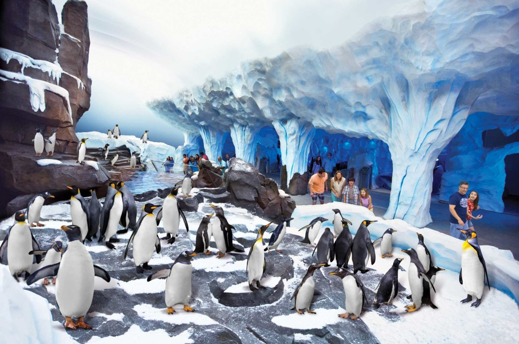 Parque SeaWorld em Orlando: Antarctica Empire of the Penguin