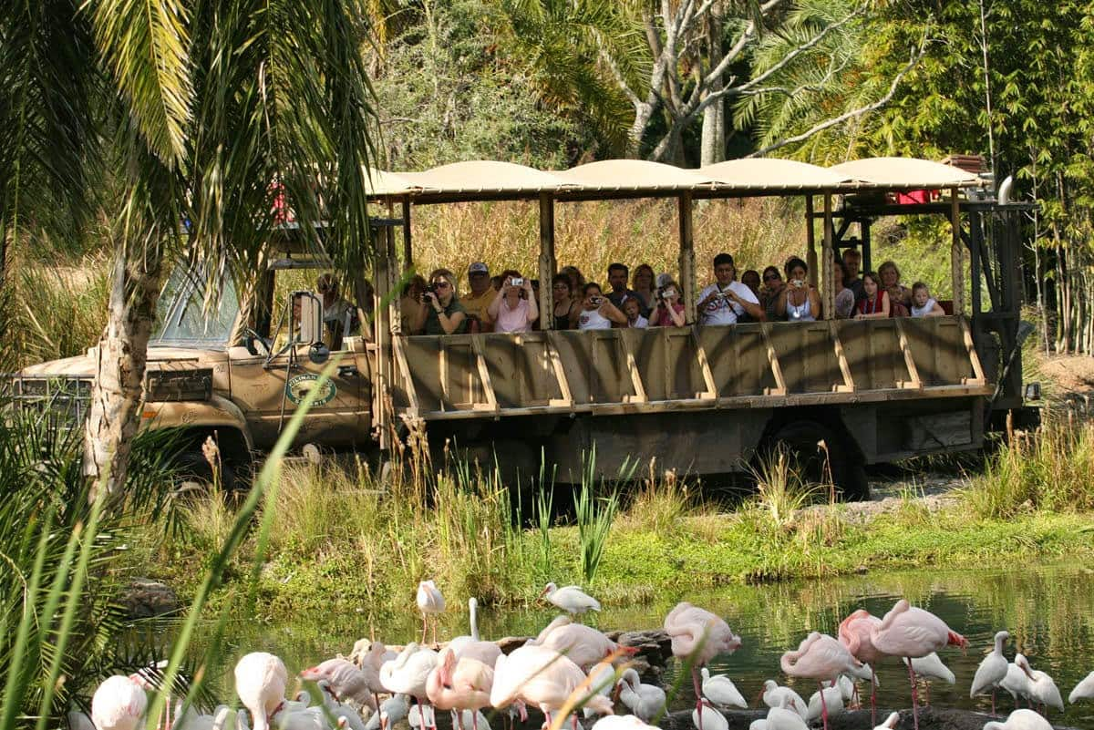 Parque Animal Kingdom da Disney Orlando: Kilimanjaro Safaris