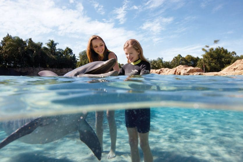Como montar seu roteiro da viagem a Orlando: parque Discovery Cove