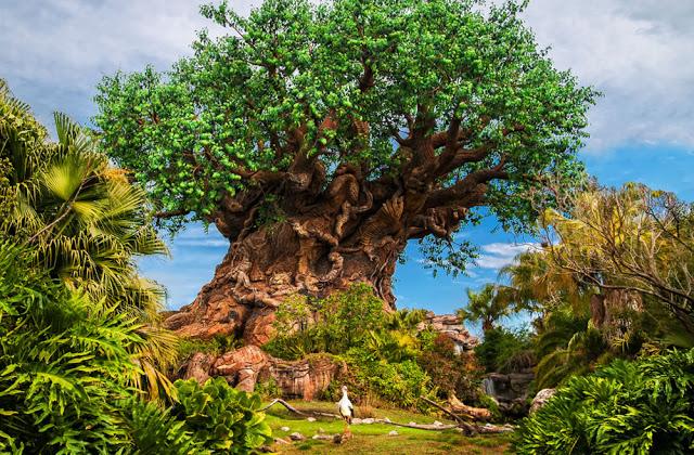 Os principais parques de Orlando: parque Animal Kingdom da Disney Orlando