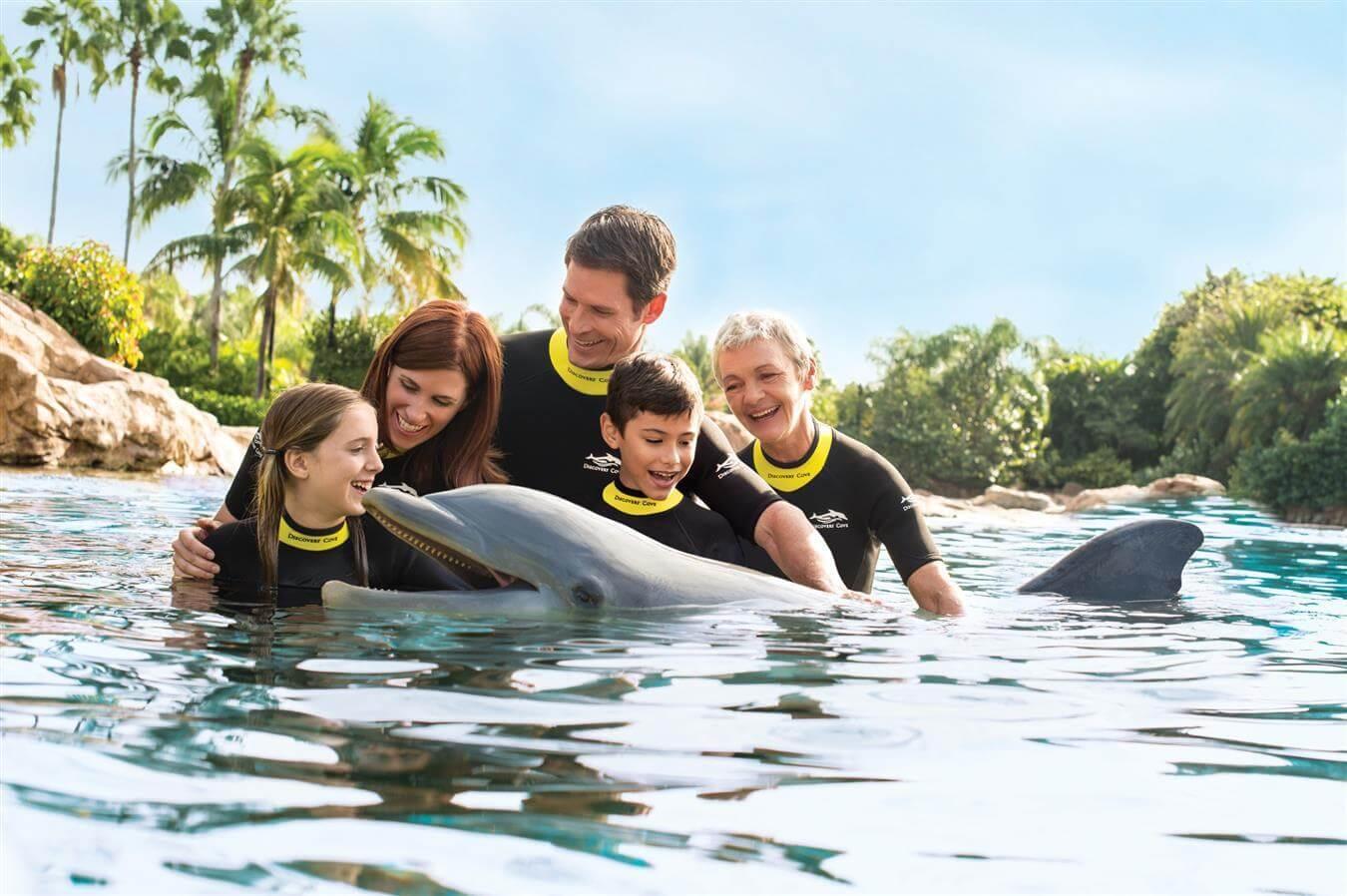 Nadar com golfinhos no Discovery Cove Orlando: família