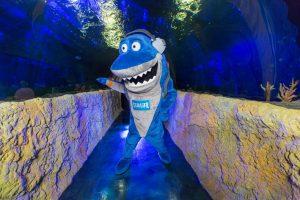 Aquário Sea Life em Orlando: atrações