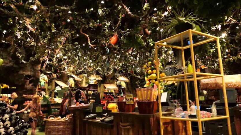 Disney Springs Orlando: Rainforest Cafe