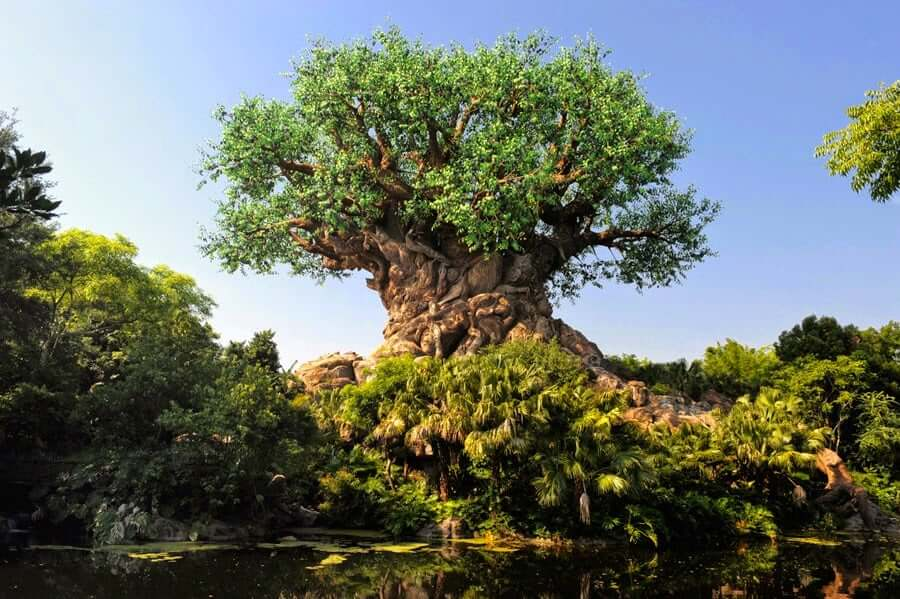 Party for the Planet no Animal Kingdom da Disney Orlando em 2019: Árvore da Vida