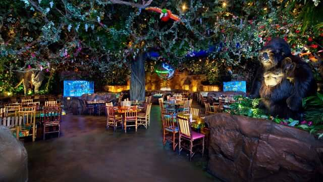 Pictures Of Rainforest Cafe Orlando
