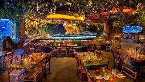 Os melhores restaurantes de Disney Springs: restaurante Rainforest Cafe