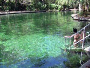 7 parques e reservas naturais em Orlando: Reserva natural Wekiwa Springs State Park