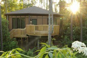 7 lugares para se hospedar perto da natureza em Orlando: Disney's Saratoga Springs Resort & Spa