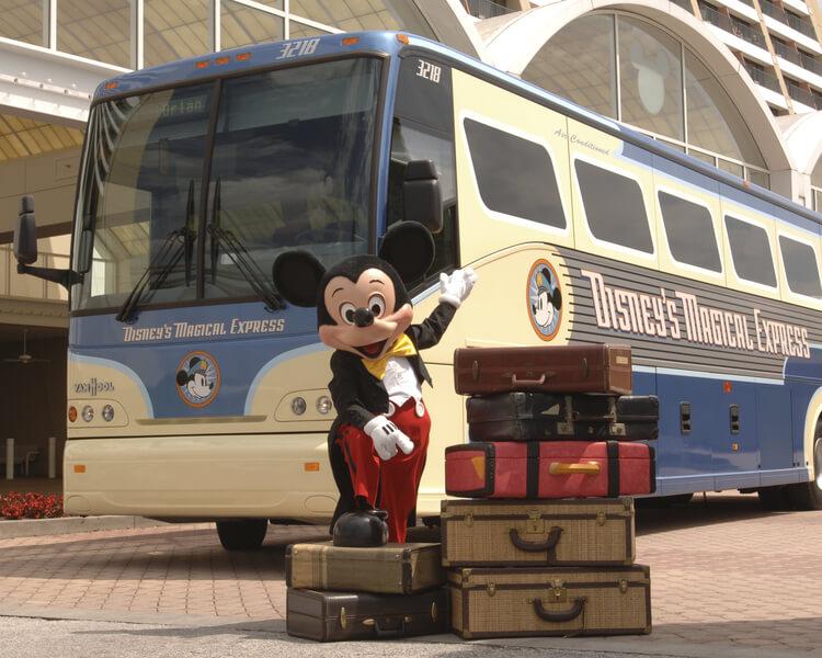 Ônibus Disney Magical Express em Orlando - 2019 | Dicas da Disney e