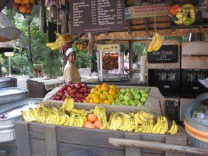 Onde comer comida saudável em Orlando: Harambe Fruit Market no parque Disney Animal kingdom