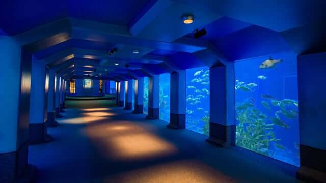 Área Future World do Disney Epcot em Orlando: SeaBase