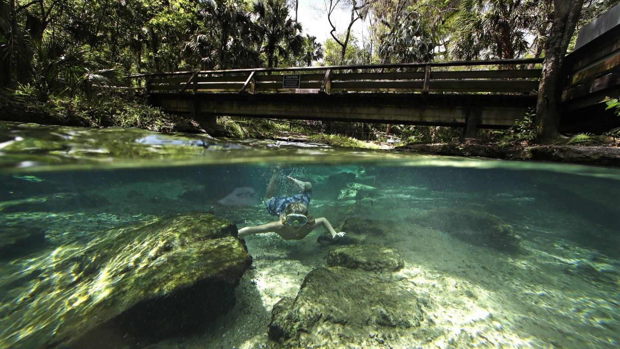 Passeio por Rock Springs Run em Kelly Park perto de Orlando: snorkeling