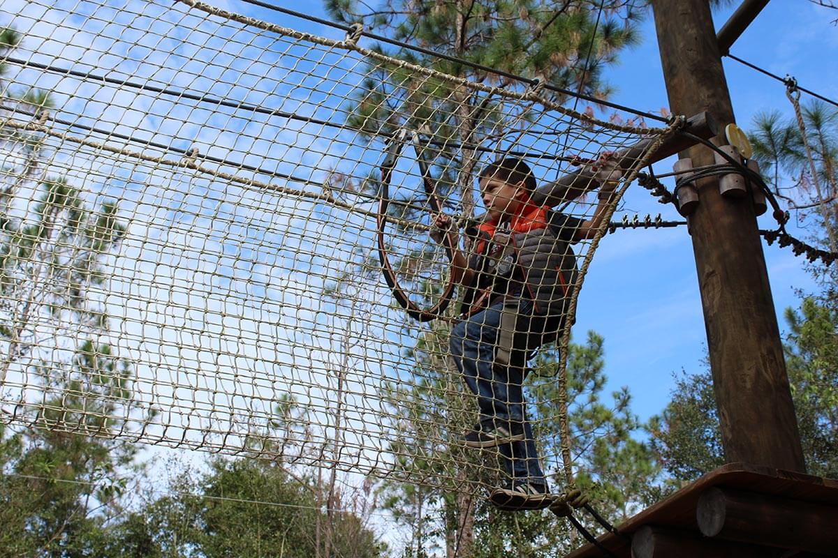 O que fazer em Kissimmee: Orlando Tree Trek Adventure Park