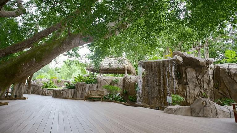 O que fazer em Sarasota: Marie Selby Botanical Gardens