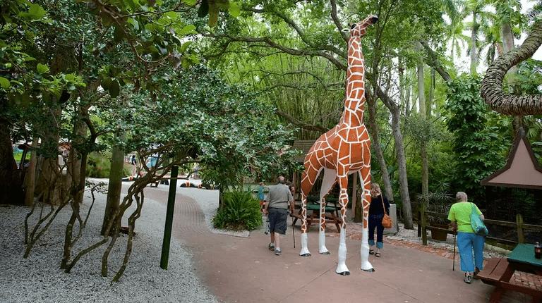 O que fazer em Sarasota: zoológico Sarasota Jungle Gardens