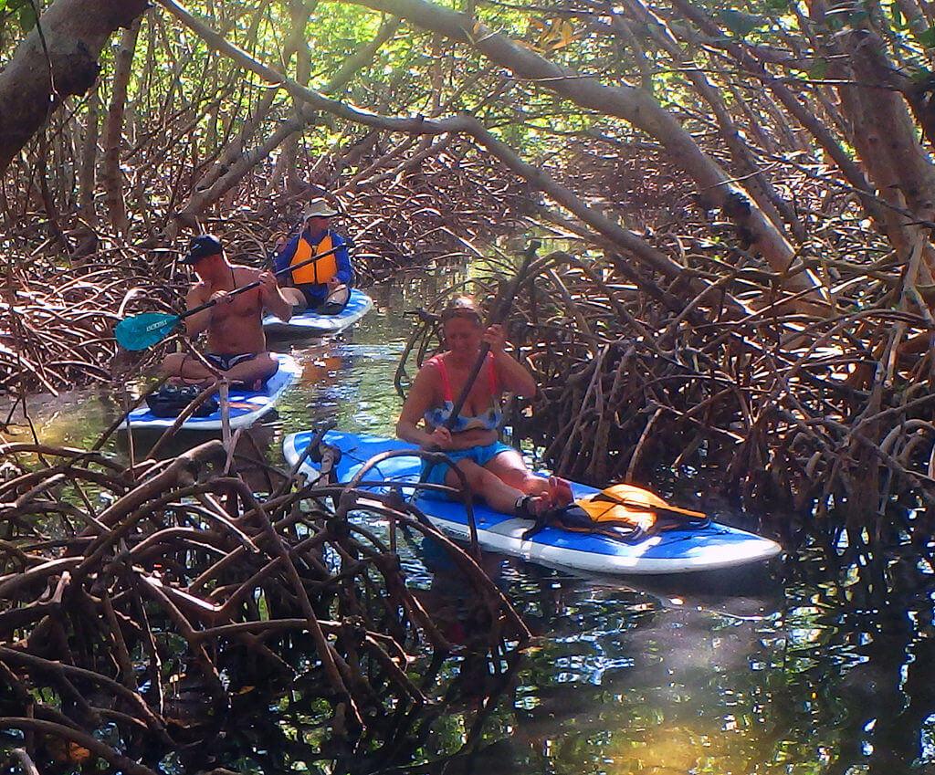O que fazer em Sarasota: South Lido County Park