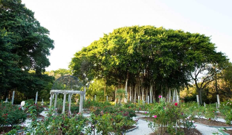 Pontos turísticos em Sarasota: The Ringling Garden