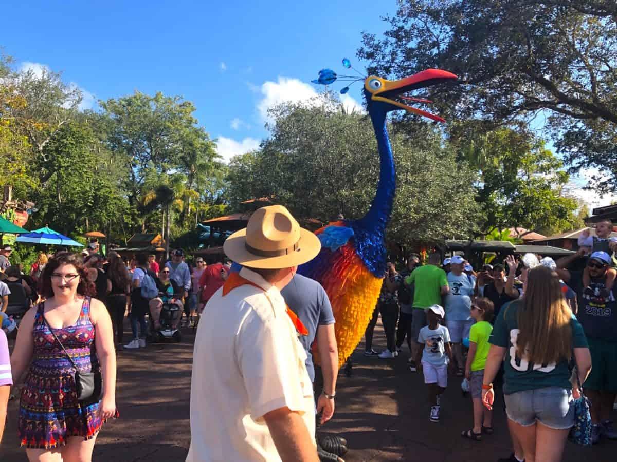 """Encontre Kevin de """"Up! Altas Aventuras"""" no Disney's Animal Kingdom em Orlando: Discovery Island"""
