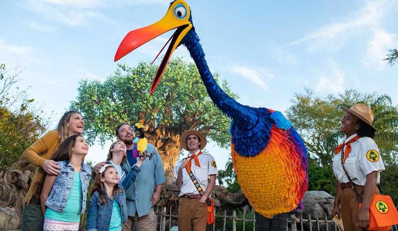 """Encontre Kevin de """"Up! Altas Aventuras"""" no Disney's Animal Kingdom em Orlando"""