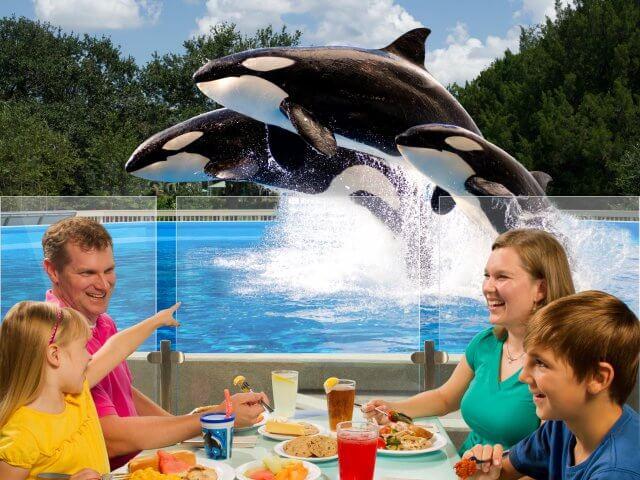 Refeição com a Shamu no SeaWorld Orlando