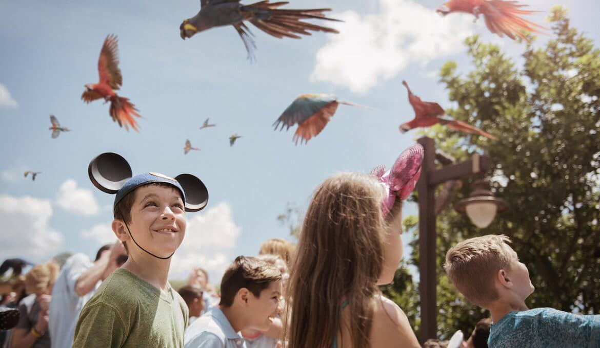 Party for the Planet no Animal Kingdom da Disney Orlando em 2019