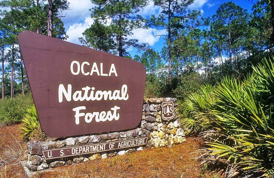 Ocala National Forest perto de Orlando: placa