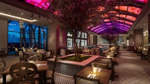Restaurante Toledo – Tapas, Steak & Seafood na Disney Orlando: interior